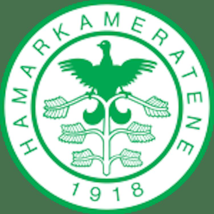 Logo Ham Kam